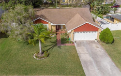 Photo of 15106 Springview Street, TAMPA, FL 33624 (MLS # T3158384)