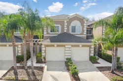 Photo of 18118 Nassau Point Drive, TAMPA, FL 33647 (MLS # T3158614)