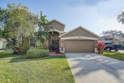 Photo of 9026 Cliff Lake Lane, TAMPA, FL 33614 (MLS # T3158849)