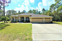 Photo of 7049 Poppas Pass, BROOKSVILLE, FL 34602 (MLS # T3158890)