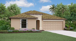 Photo of 910 Zone Tailed Hawk Place, RUSKIN, FL 33570 (MLS # T3162174)