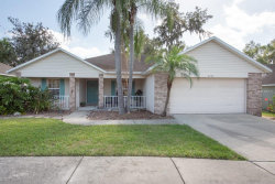 Photo of 2333 Towering Oaks Circle, SEFFNER, FL 33584 (MLS # T3163184)