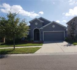 Photo of 12110 Whistling Wind Drive, RIVERVIEW, FL 33569 (MLS # T3163362)