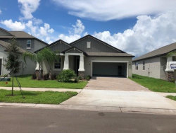 Photo of 11504 Freshwater Ridge Drive, RIVERVIEW, FL 33579 (MLS # T3163469)