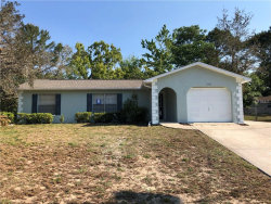 Photo of 11303 Redgate Street, SPRING HILL, FL 34609 (MLS # T3163537)