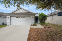 Photo of 441 Summer Sails Drive, VALRICO, FL 33594 (MLS # T3163638)