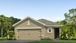 Photo of 10225 Geese Trail Circle, SUN CITY CENTER, FL 33573 (MLS # T3163696)