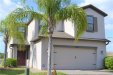 Photo of 10012 Spanish Cherry Court, TAMPA, FL 33647 (MLS # T3164048)