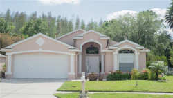 Photo of 1223 Timber Trace Drive, WESLEY CHAPEL, FL 33543 (MLS # T3164143)
