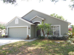 Photo of 1428 Lake Shore Ranch Drive, SEFFNER, FL 33584 (MLS # T3165788)