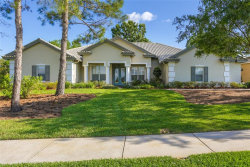 Photo of 13954 Thoroughbred Drive, DADE CITY, FL 33525 (MLS # T3166945)