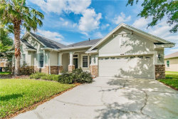 Photo of 8612 Westerland Drive, LAND O LAKES, FL 34637 (MLS # T3168129)