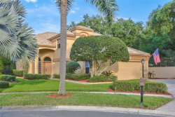 Photo of 9338 Fairway Lakes Court, TAMPA, FL 33647 (MLS # T3169560)