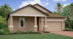 Photo of 13308 Wildflower Meadow Drive, RIVERVIEW, FL 33579 (MLS # T3169821)