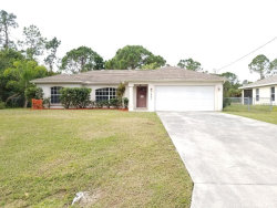 Photo of 1623 Wise Drive, NORTH PORT, FL 34286 (MLS # T3169960)