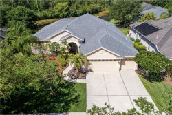 Photo of 10261 Shadow Branch Drive, TAMPA, FL 33647 (MLS # T3169968)