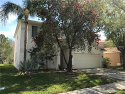 Photo of 18129 Sandy Pointe Drive, TAMPA, FL 33647 (MLS # T3169988)
