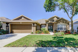 Photo of 19120 Golden Cacoon Place, LUTZ, FL 33558 (MLS # T3170517)