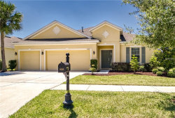 Photo of 10213 Caraway Spice Avenue, RIVERVIEW, FL 33578 (MLS # T3170586)