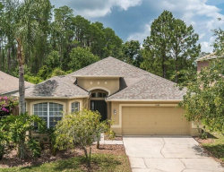 Photo of 7549 Citrus Blossom Drive, LAND O LAKES, FL 34637 (MLS # T3172698)