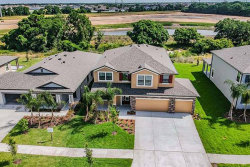 Photo of 11412 Leland Groves Drive, RIVERVIEW, FL 33579 (MLS # T3173954)