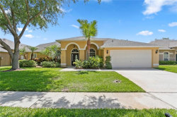 Photo of 19005 Dove Creek Drive, TAMPA, FL 33647 (MLS # T3175062)