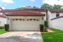 Photo of 11314 Linarbor Place, TEMPLE TERRACE, FL 33617 (MLS # T3175073)
