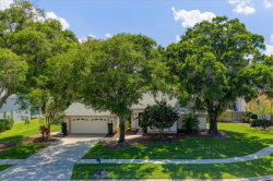 Photo of 17306 Stetson Lane, ODESSA, FL 33556 (MLS # T3175877)