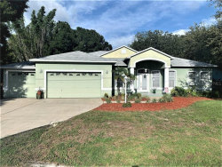 Photo of 908 Riviere Road, PALM HARBOR, FL 34683 (MLS # T3175929)