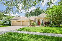 Photo of 3831 Misty Landing Drive, VALRICO, FL 33594 (MLS # T3175981)