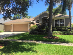 Photo of 3111 Red Lion Drive, VALRICO, FL 33596 (MLS # T3176089)