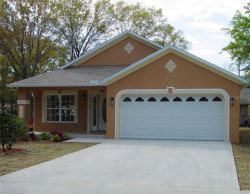 Photo of 6003 Harwell Estates Drive, DOVER, FL 33527 (MLS # T3176195)
