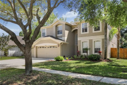 Photo of 2233 Briana Drive, BRANDON, FL 33511 (MLS # T3176223)
