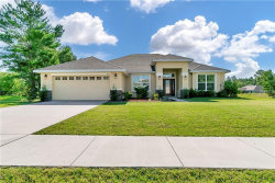 Photo of 3346 Opportunity Avenue, SPRING HILL, FL 34609 (MLS # T3176359)