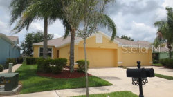 Photo of 11524 Captiva Kay Drive, RIVERVIEW, FL 33569 (MLS # T3176371)