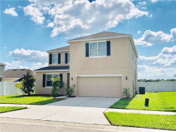 Photo of 14238 Alistar Manor Drive, WIMAUMA, FL 33598 (MLS # T3176579)