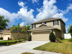 Photo of 20718 Whitewood Way, TAMPA, FL 33647 (MLS # T3176580)