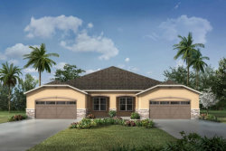 Photo of 11626 Weathered Felling Drive, Unit 311, RIVERVIEW, FL 33569 (MLS # T3177585)