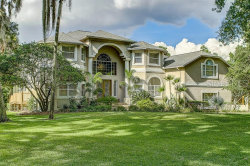 Photo of 13006 Bell Creek Chase, RIVERVIEW, FL 33569 (MLS # T3177608)