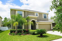 Photo of 18334 Aylesbury Lane, LAND O LAKES, FL 34638 (MLS # T3179301)