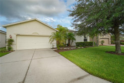 Photo of 10048 Cleghorn Drive, SAN ANTONIO, FL 33576 (MLS # T3179442)