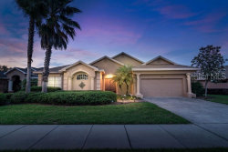 Photo of 12407 Forest Highlands Drive, DADE CITY, FL 33525 (MLS # T3179675)