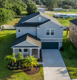 Photo of 11704 Thicket Wood Drive, RIVERVIEW, FL 33579 (MLS # T3180433)
