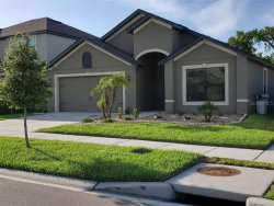 Photo of 11860 Thicket Wood Drive, RIVERVIEW, FL 33579 (MLS # T3180547)