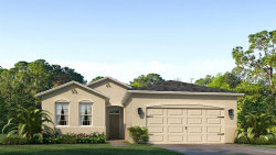 Photo of 31770 Tansy Bend, WESLEY CHAPEL, FL 33545 (MLS # T3180592)