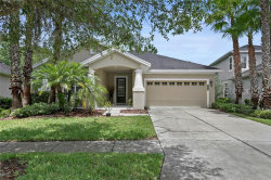 Photo of 20068 Heritage Point Drive, TAMPA, FL 33647 (MLS # T3180998)