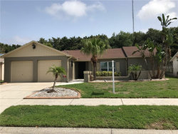 Photo of 2721 Narcissus Drive, HOLIDAY, FL 34691 (MLS # T3181322)
