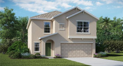 Photo of 10231 Boggy Moss Drive, RIVERVIEW, FL 33579 (MLS # T3181414)