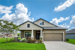 Photo of 19911 Hidden Glen Drive, LAND O LAKES, FL 34638 (MLS # T3181670)
