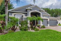 Photo of 5129 Alderbrook Place, LAND O LAKES, FL 34638 (MLS # T3182181)